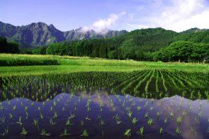 IMGP5332 300x199 - 新潟県湯沢町の絶景写真〜滝ノ又地区〜