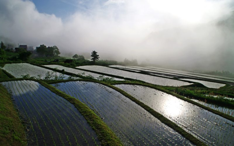 IMGP5583 800x500 - 新潟県湯沢町の絶景写真〜滝ノ又地区〜