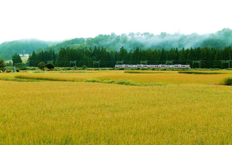 IMGP7493 800x500 - 新潟県湯沢町の絶景写真〜滝ノ又地区〜