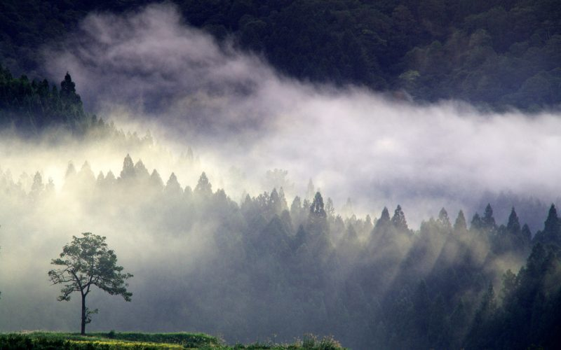 IMGP8682 crop 800x500 - 新潟県湯沢町の絶景写真〜滝ノ又地区〜