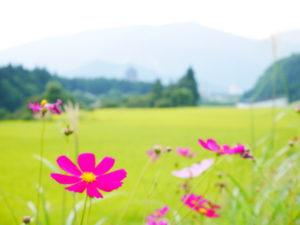 湯沢町への移住について