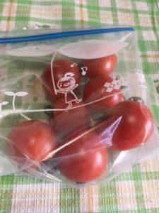 滝ノ又産のトマト