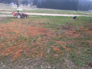 img 7371 300x225 - 耕作放棄地の開拓に失敗?