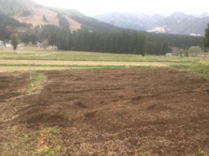 img 7376 300x225 - 耕作放棄地を元どおりにするのは困難?