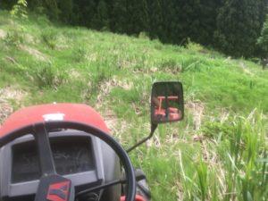 img 7506 300x225 - 耕作放棄地の開拓に失敗?