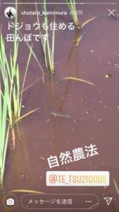 img 8650 169x300 - 田んぼの生き物図鑑