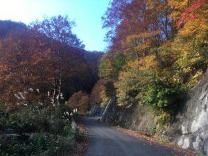 img 0848 300x225 - 湯沢町で絶景の紅葉刈り