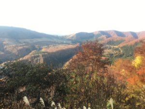 img 0857 300x225 - 湯沢町で絶景の紅葉刈り
