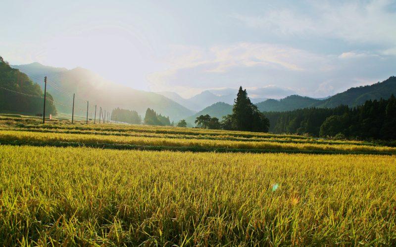 IMGP8396 800x500 - 新潟県湯沢町の絶景写真〜滝ノ又地区〜