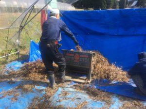 IMG 5287 300x225 - 湯沢町の滝の又農産とは