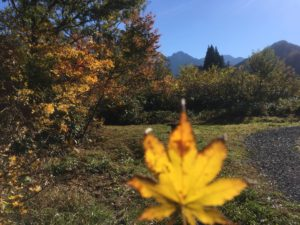 img 5178 1 300x225 - 湯沢町の絶景