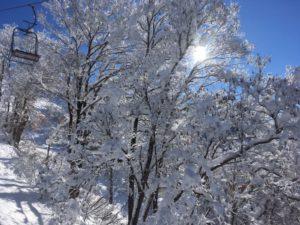 img 6018 300x225 - 冬山の絶景
