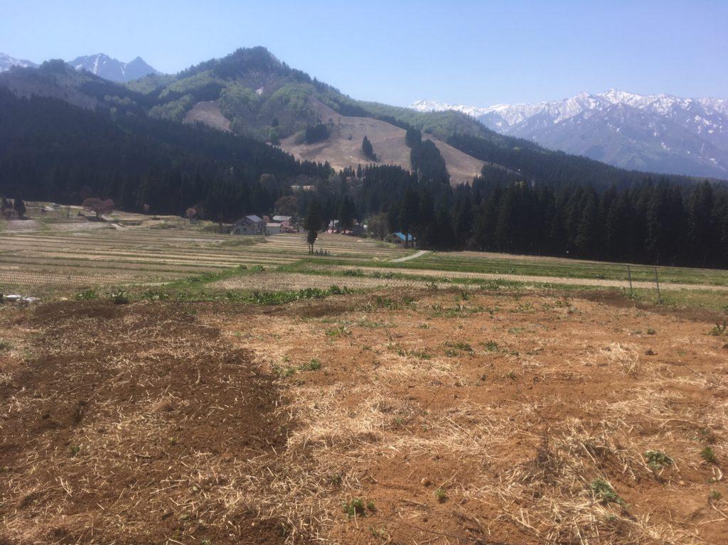 耕作放棄地を元どおりにするのは困難?